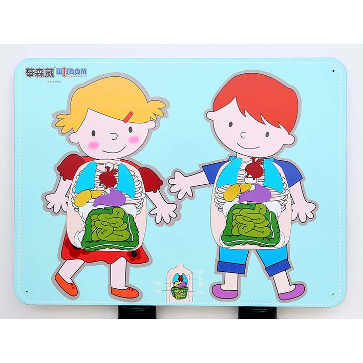 Children's Wallboard – Stick Organs